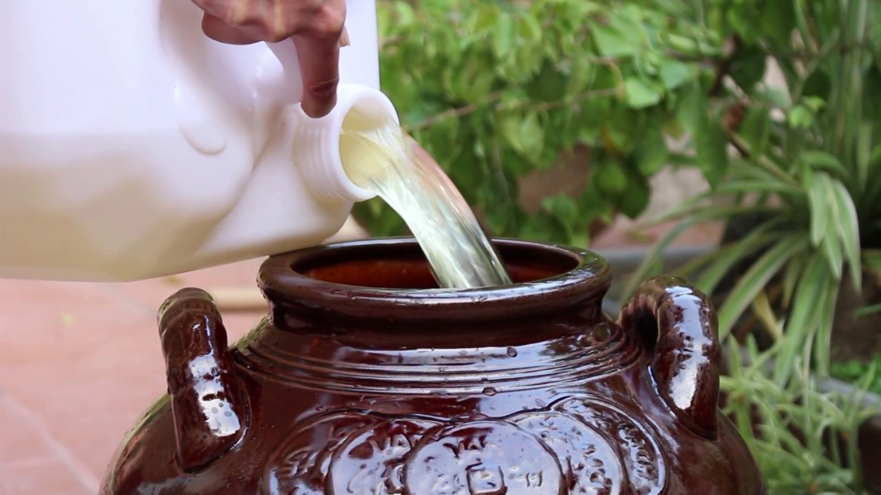 Cách nấu rượu không bị chua, cách khử mùi rượu khê cực đơn giản