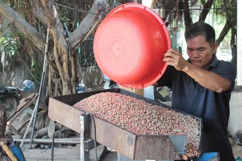 Máy ép đậu phộng thành dầu